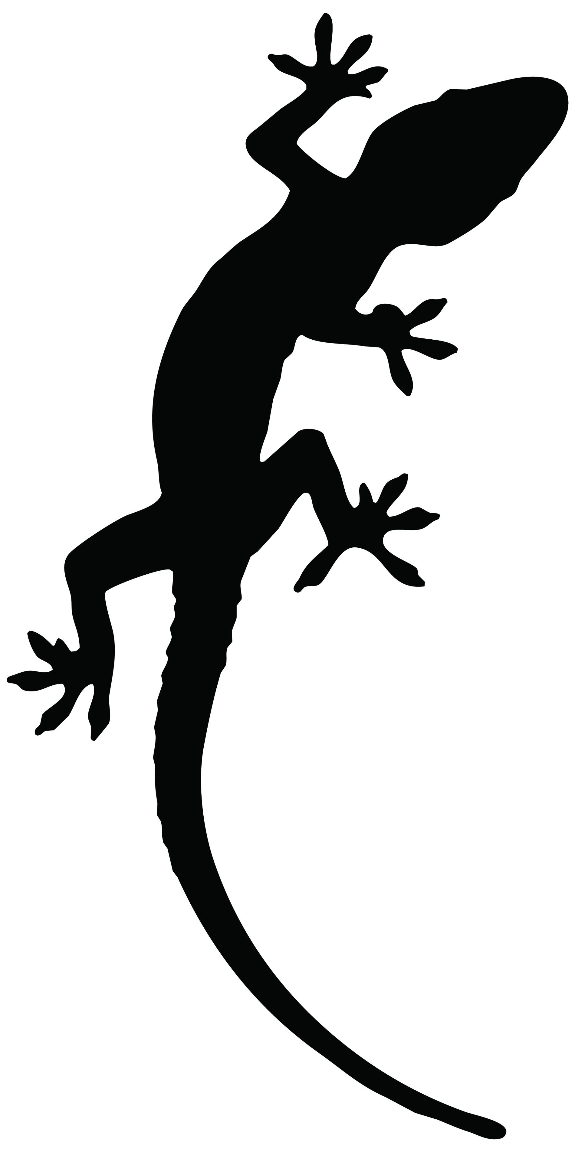 Lizardjpg
